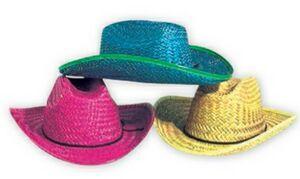 cowboy hat_neon